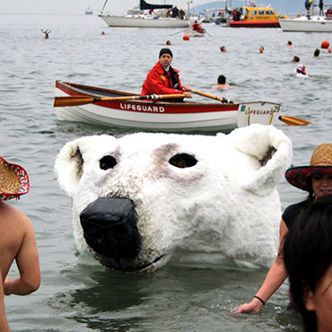 Polar Bear Head 2014
