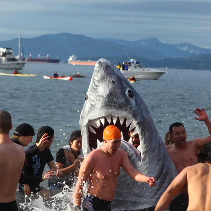 Sharkie 2012