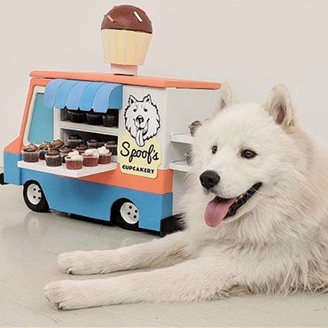 Spoof's Cupcakery – 2018